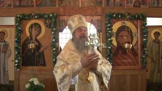 Слово епископа Максима в Александро-Невском храме села Соловые
