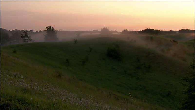 Дикая природа Германии Дикая местность