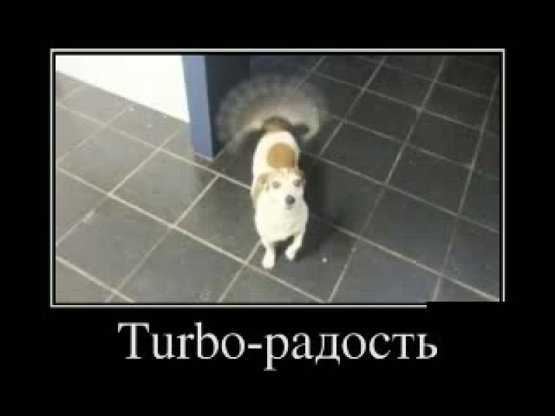 Новые русские демотиваторы. Охота на вампиров и Turbo-радость! НАША RUSSIA